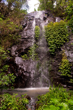 Nimbin Waterfall